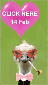 Valentine Catalogue