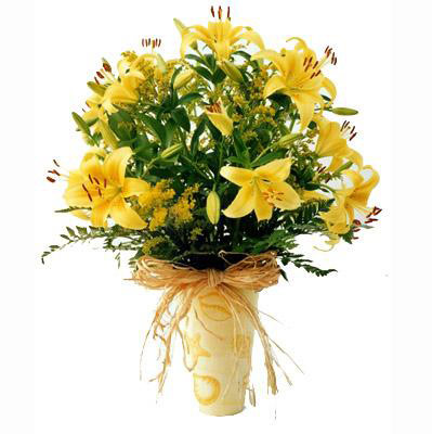 Flora Niche South Africa-A Ray of Sunshine-Pot of Umbelatum Lillies - Vase included in Price