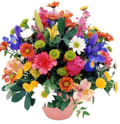 Flora Niche South Africa-Bright and Cheerful-Cottage posy bowl