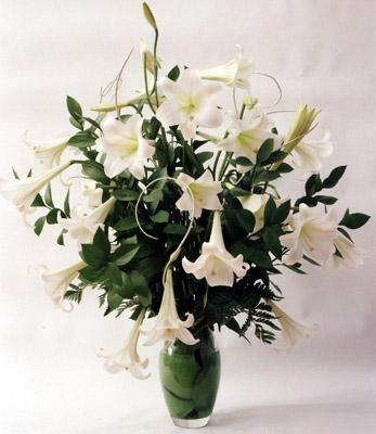 Flora Niche South Africa-Classical White-Pot of St Joseph Lillies - Vase included in Price