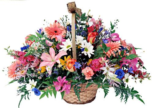 Flora Niche African-Country Charm-Basket of Mixed Flowers