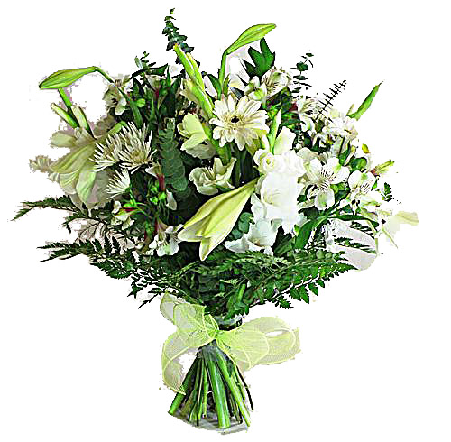 Flora Niche South Africa-White and Fresh-
