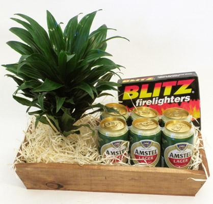 Flora Niche South Africa-Beer & Braai-Plant, 6 Pack and Blitz