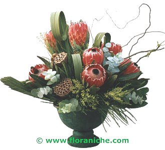 Flora Niche South Africa-South African Splendour-A Vase of Proteas